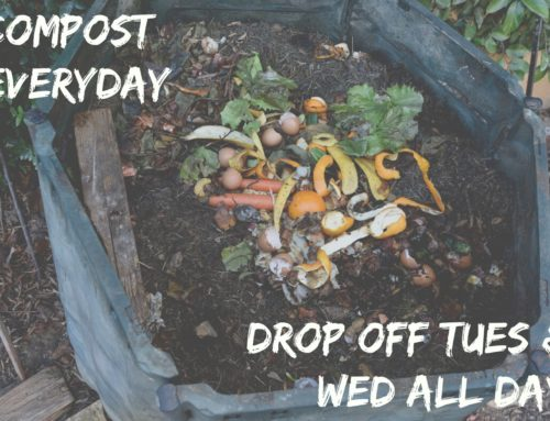 Compost Drop Off